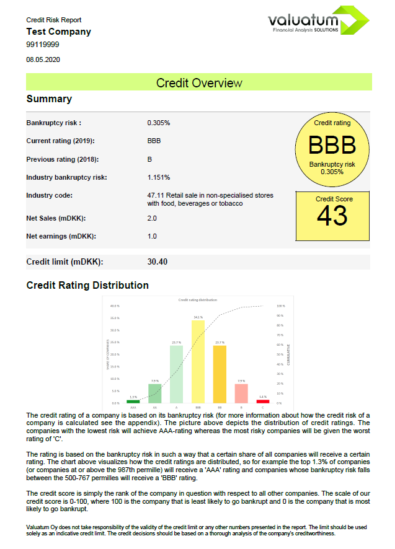 Credit risk report example